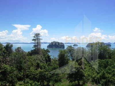 TheLane Land in krabi 10,9.2rai 12mb I rai (2)