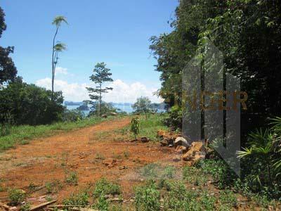TheLane Land in krabi 10,9.2rai 12mb I rai (4)
