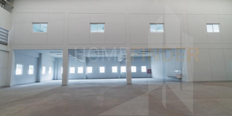 Amata Factory BG37-17
