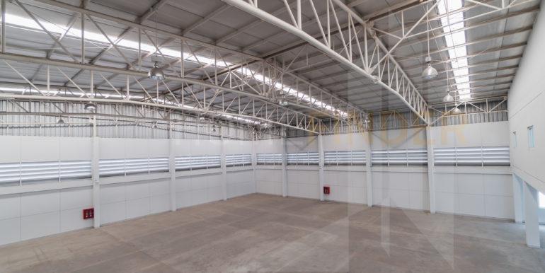 Amata Factory BG37-8