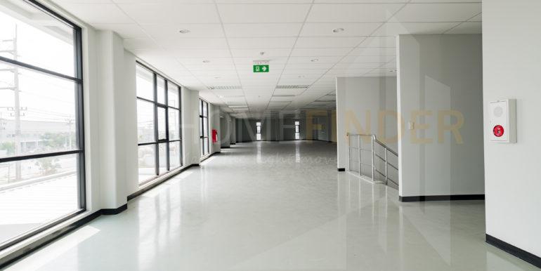 Amata Factory BG84-3